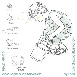 Coloring & observation 2