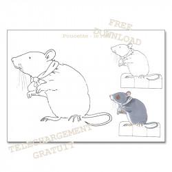 Poucette - le rat